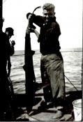 Hugh Campbell with shark caught off Land's End. Courtesy of Robert Held.
