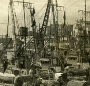 SC 41 and others in Lisbon. G.S. Dole Collection